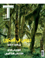 T Qatar Arabic, Dec 2017 – Jan 2018